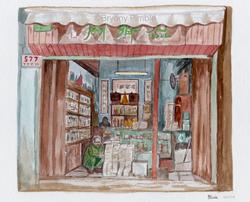 Chinese bookshop - Bryony Pimble
