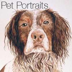 pet portraits-button
