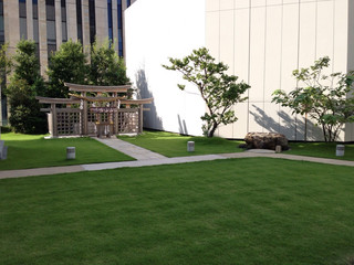 A green retreat in the heart of Ginza...