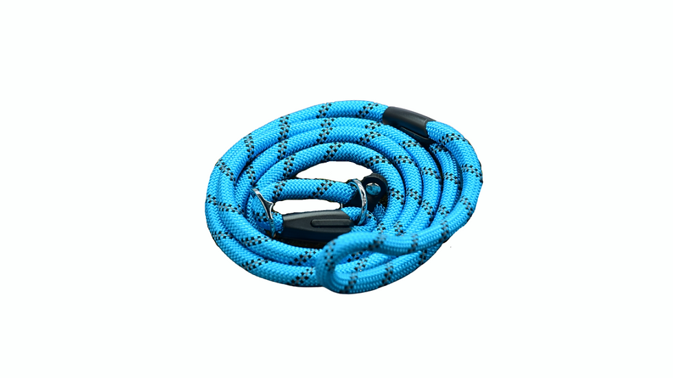 Blue Dog and Puppy Slip Leads
