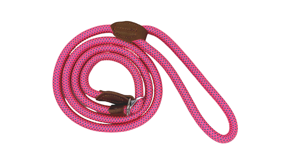 Pink Fleck Dog and Puppy Slip Leads