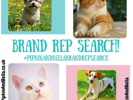 Dog, Puppy, Cat & Kitten Brand Reps for Pipkin and Bella