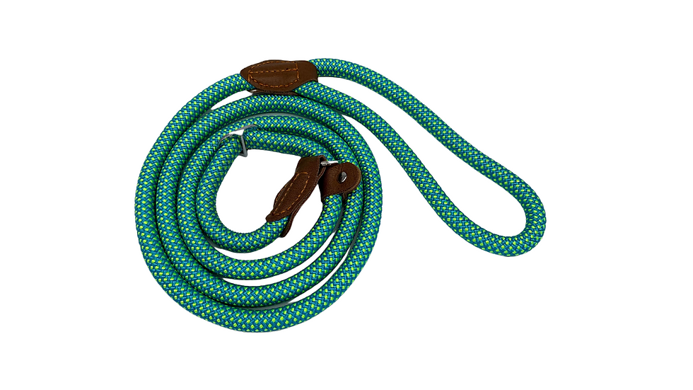 Teal Fleck Dog and Puppy Slip Leads