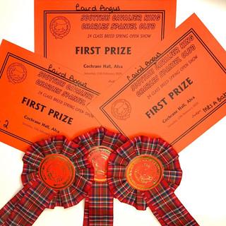 1st Awards.