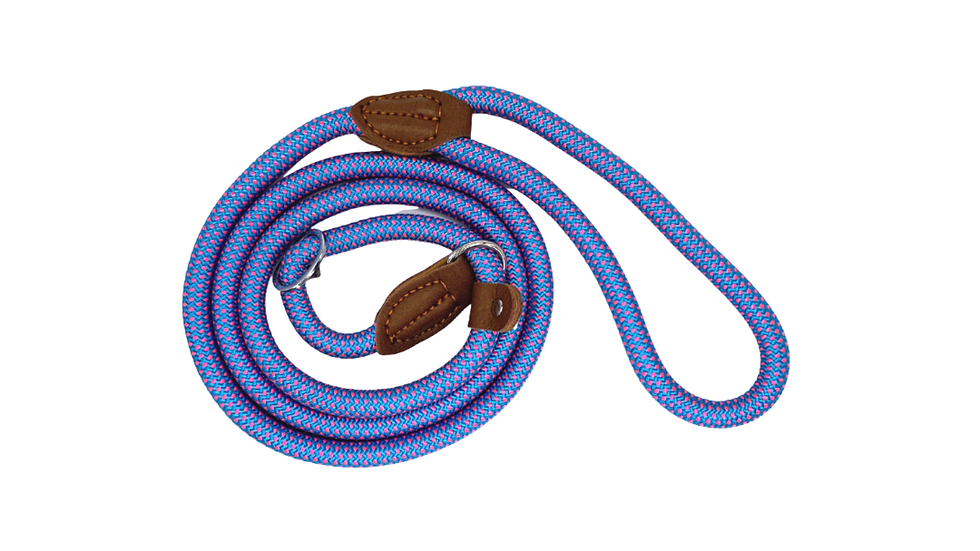 Blue Fleck Dog and Puppy Slip Leads