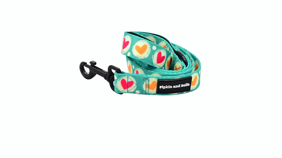 Heart 2 Heart Dog and Puppy Lead
