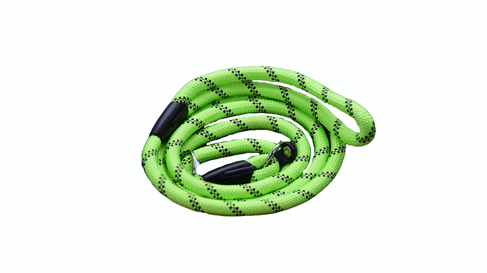 Lime Green Dog and Puppy Slip Leads