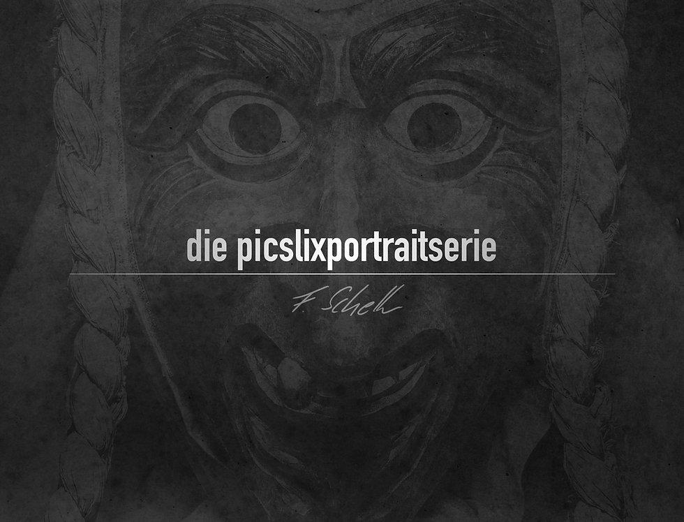 pps buch cover vorne Kopie.jpg