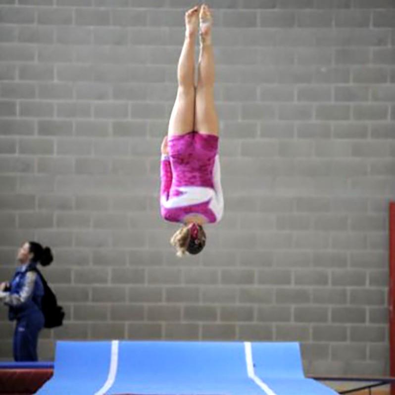 Acrobatica