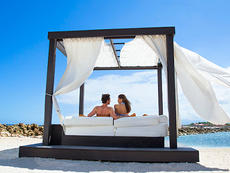 1 LUXURY DAY BED