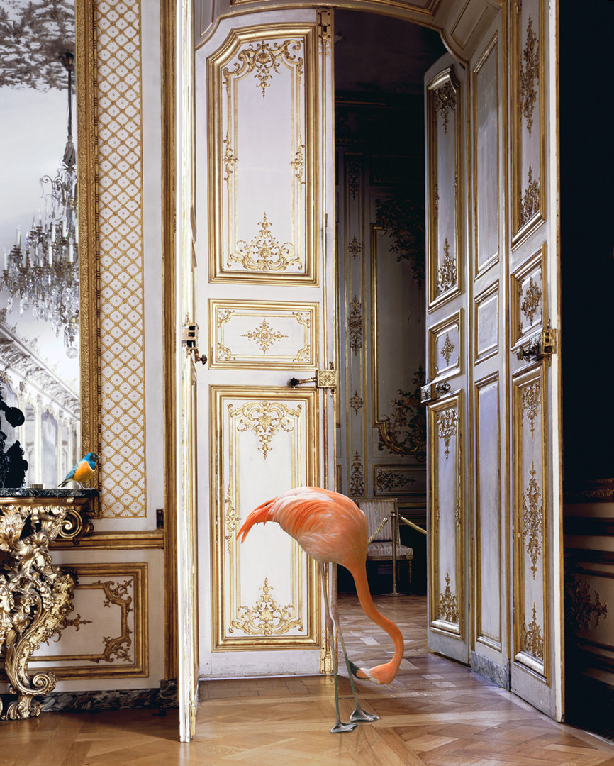 The Battle Gallery [Château Chantilly] | From the series Fables 1 | Karen Knorr | 2003-08