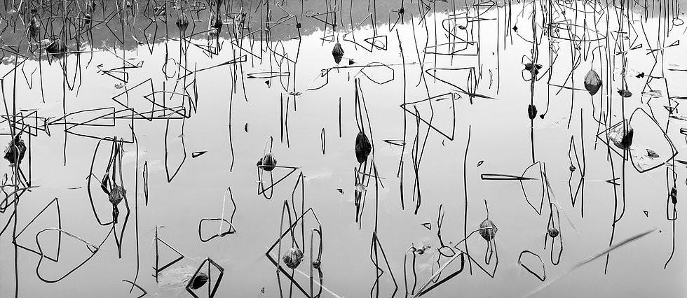 Hangzhou, Zhejiang (Triangle Lotus)   Lois Conner   1998