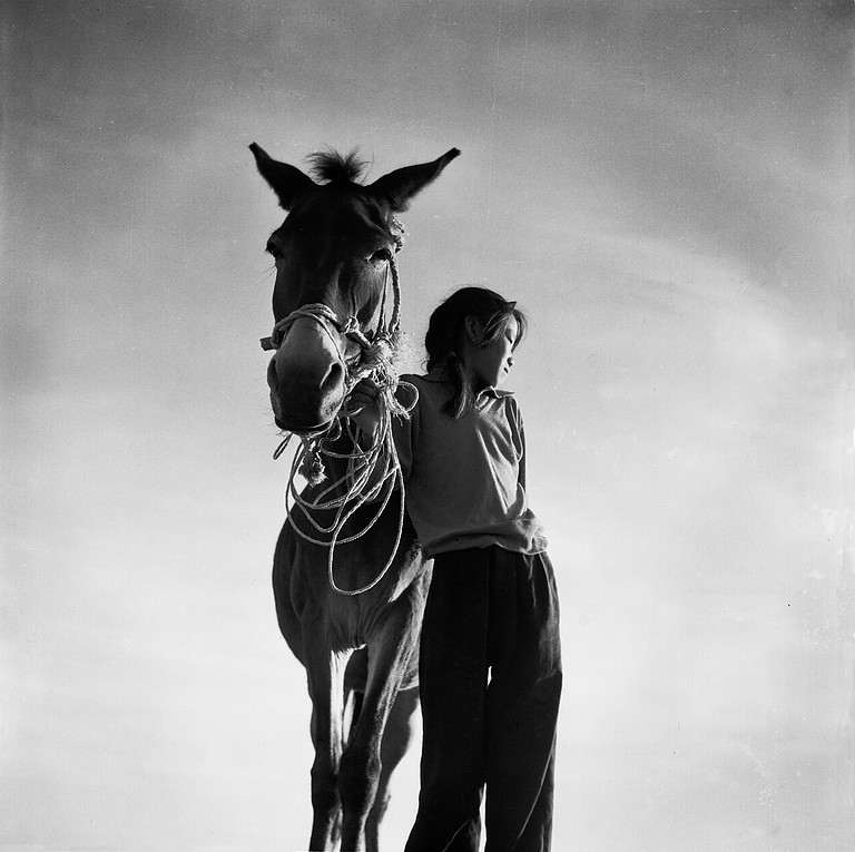 Mule and Girl | Li Qiang | 1984