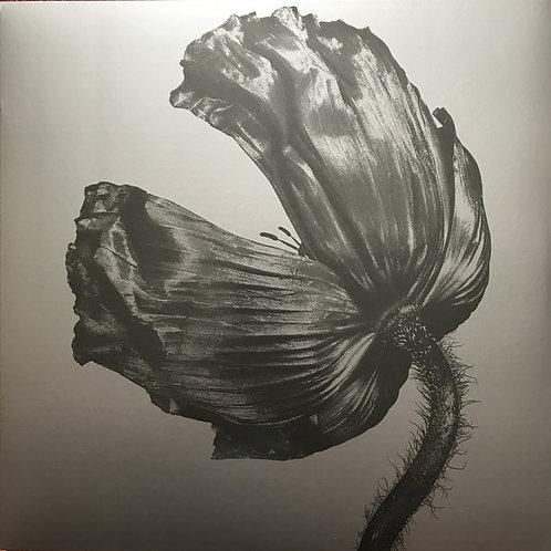 Pet Shop Boys – Release