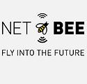 Net BEE.PNG