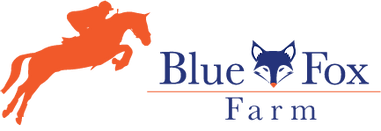 BlueFox_color_2 .png