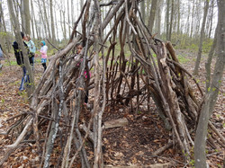 Willowgrove Farm: Shelter-building
