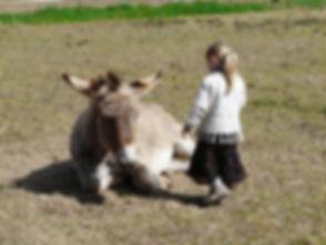 Donkey kids hike