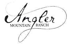 AMR grey-logo-_edited.png