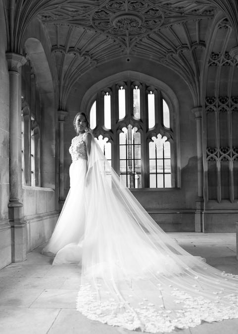 Rebecca Embellished Cathedral Veil