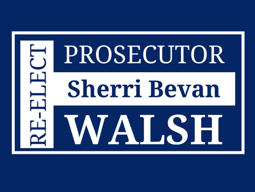 Summit County Executive Ilene Shapiro, Prosecutor Sherri Bevan Walsh defeat Republican challengers