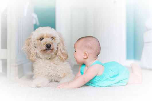 Baby and pupper on a clean white carpet. We keep your carpets clean!