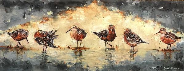 Laura Palermo, birds, endangered, red knot, shorebird, sandpiper, charleston, Paintings by Palermo, painting, art, impressionism, texture, nature, conservation, animals, declining, endangered