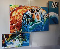 Tortuga Triptych