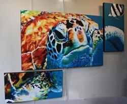 """""""Tortuga"""" Triptych"""