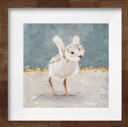 """""""Piping Plovers"""" Blue"""