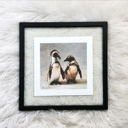 African Penguins - Black Frame