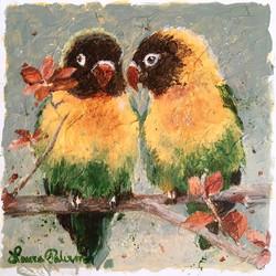 """""""Masked Lovebirds"""""""