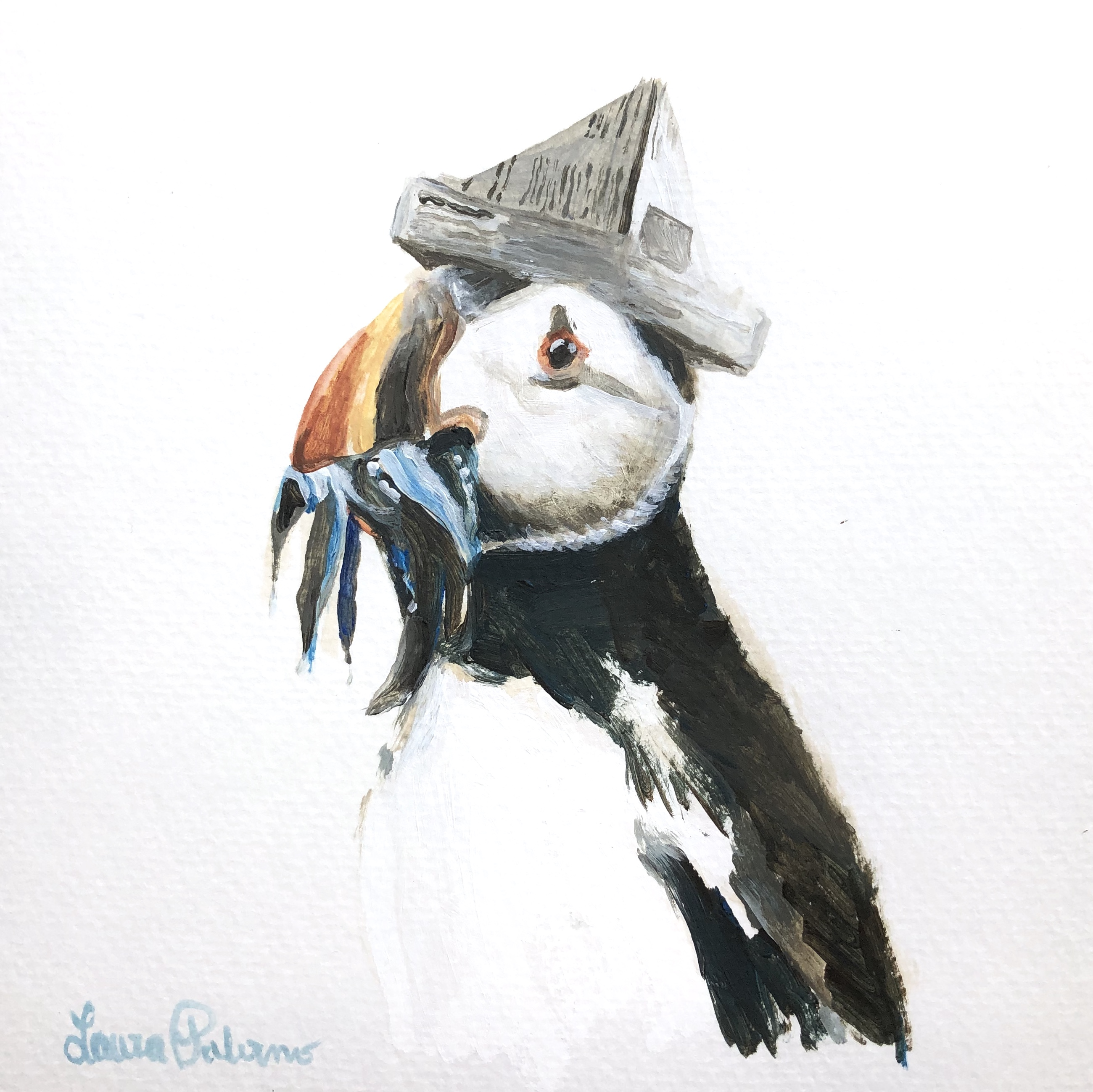 """Party Puffin"""