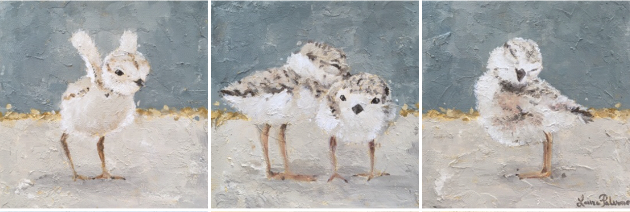 """Piping Plovers"""
