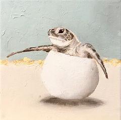 Sea Turtle Hatchlings - Blue