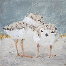 Piping Plover, shorebird, declining, wildlife, conservation, art, paintings by palermo, Laura Palermo, Piper, painting, bird, art, home, decor, beach, nursery, decoration