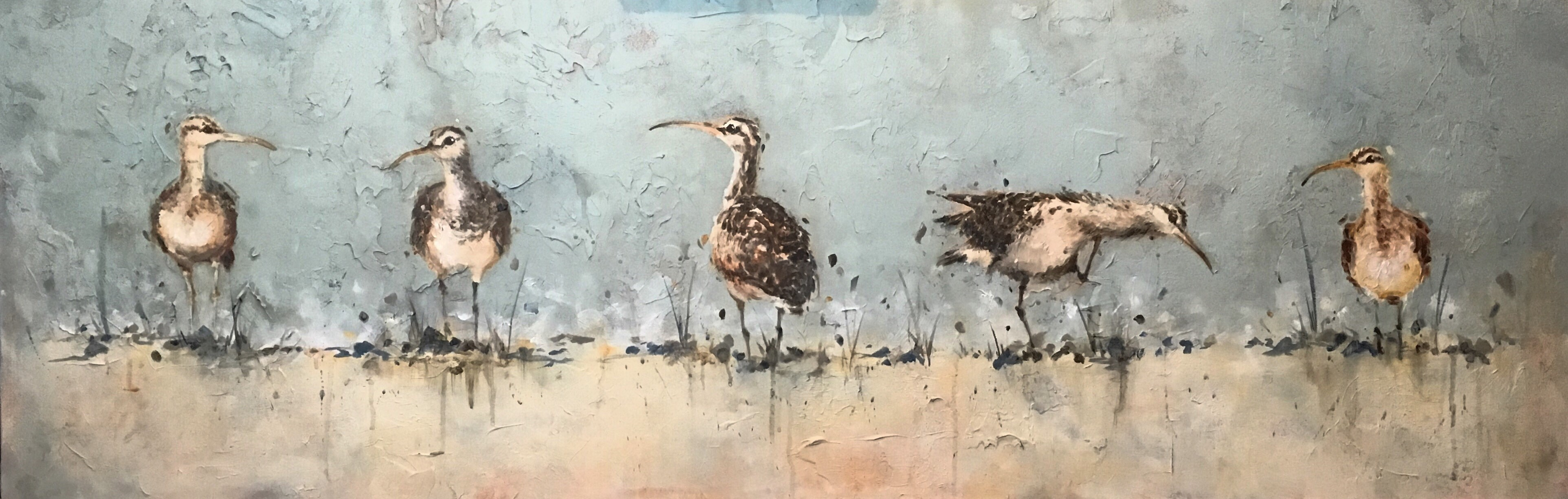 """Bristle Thighed Curlew II"""