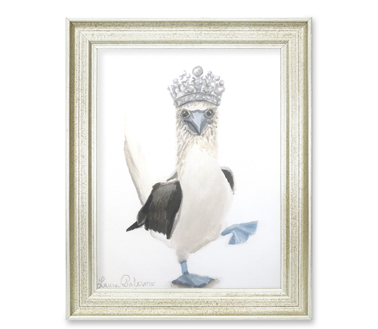 Royal Booby