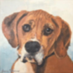 beagle painting, pet portrait, commisson, puppy, dog, gift, beagle