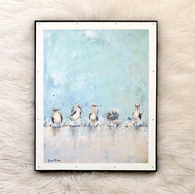 Blue Footed Boobies - Blue