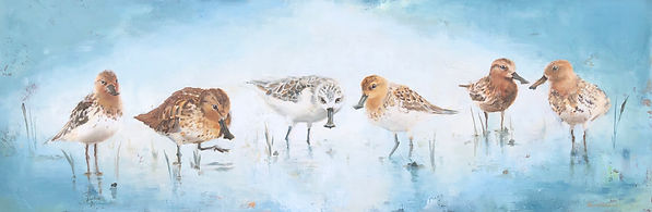 spoon-billed, sandpiper, painting, art, birds, shorebirds, beach, ocean, decor, wildlife, conservation, art, endangered, national aviary, birdlife international