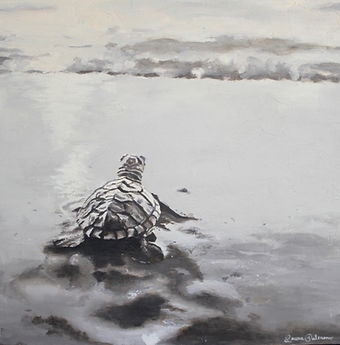 Laura Palermo, sea turtle art, sea turtle, endangered, conservation, sea turtle painting, baby turtle, black and white, painting, Charleston, hatchling, South Carolina Aquarium, ocean, scuba, beach