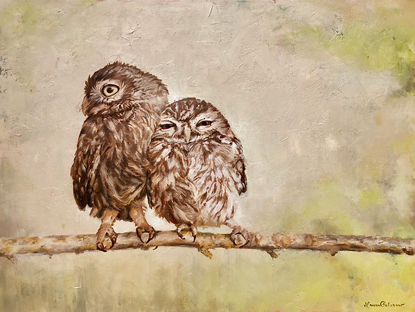 Burrowng Owls, owls, birds of prey, wildlife, conservation, art, paintings by palermo, Laura Palermo, bird