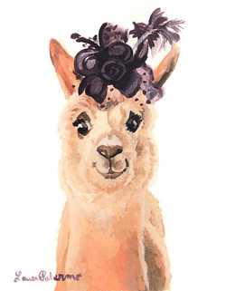 """""""Pretty Alpaca"""""""