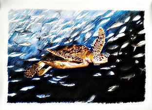 Laura Palermo, Paintings by Palermo, art, painting, sea turtle art, sea turtle, ocean, conservation, endangered, animal, scuba, underwater, Charleston, reef, colorful, nature, blue, South Carolina Aquarium, print, Loggerhead, swimming jacks