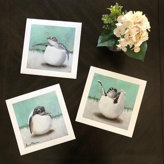 Turtle Hatchlings Triptych