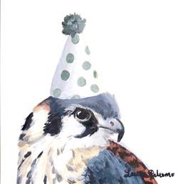 """""""Party Kestrel"""""""