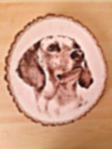 wood burning, dog, pet, portrait, commission, custom art, personalized, Laura Palermo, paintings by palermo, art