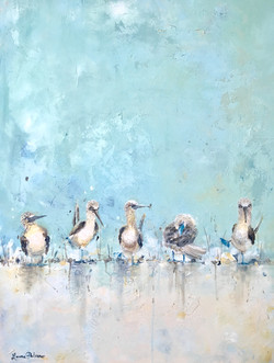 """""""Blue Footed Boobies"""" Blue"""