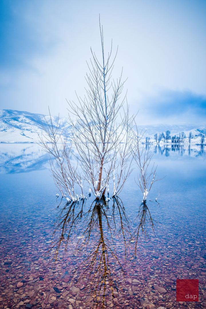 Deer Creek Winter 7